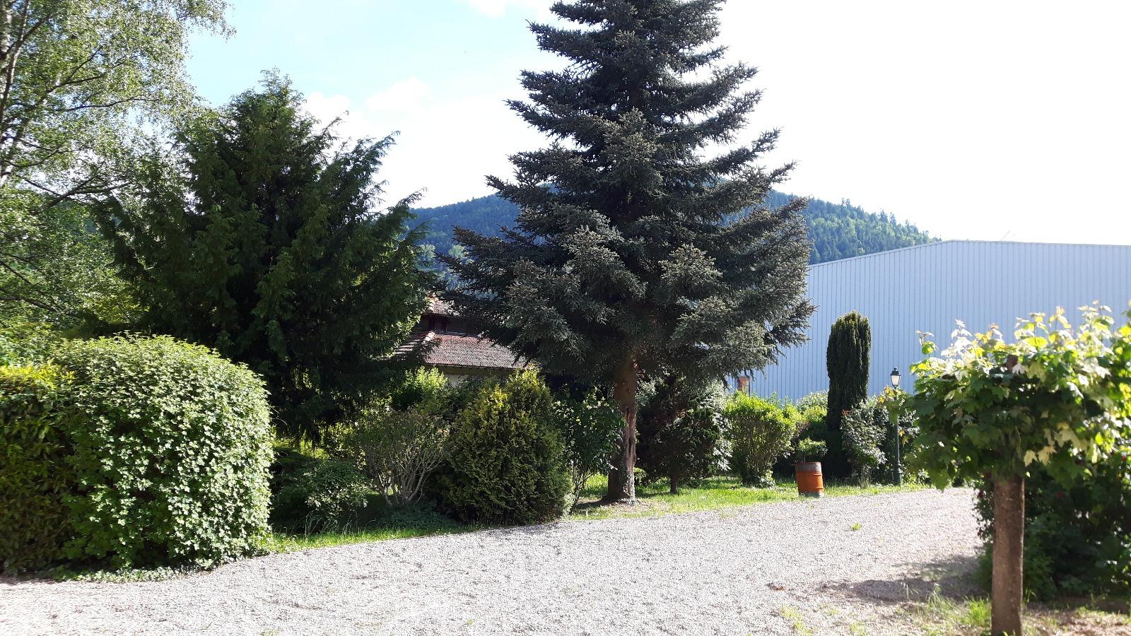 Offres de location Maison Bourg argental (42220)